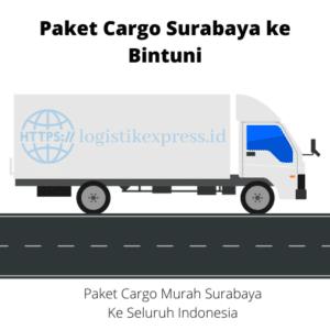 Paket Cargo Surabaya ke Bintuni