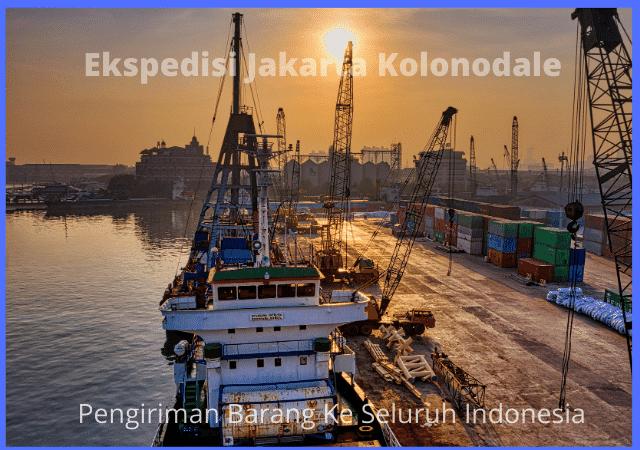 Ekspedisi Jakarta Kolonodale
