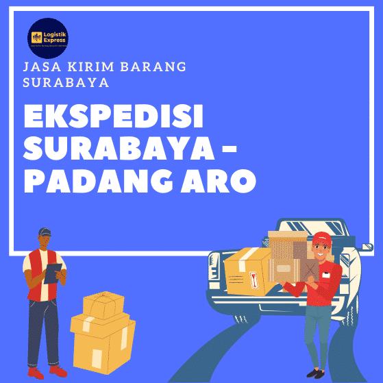 Ekspedisi Surabaya Padang Aro